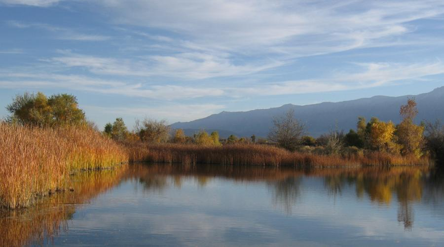 Inyo County Billy Pond