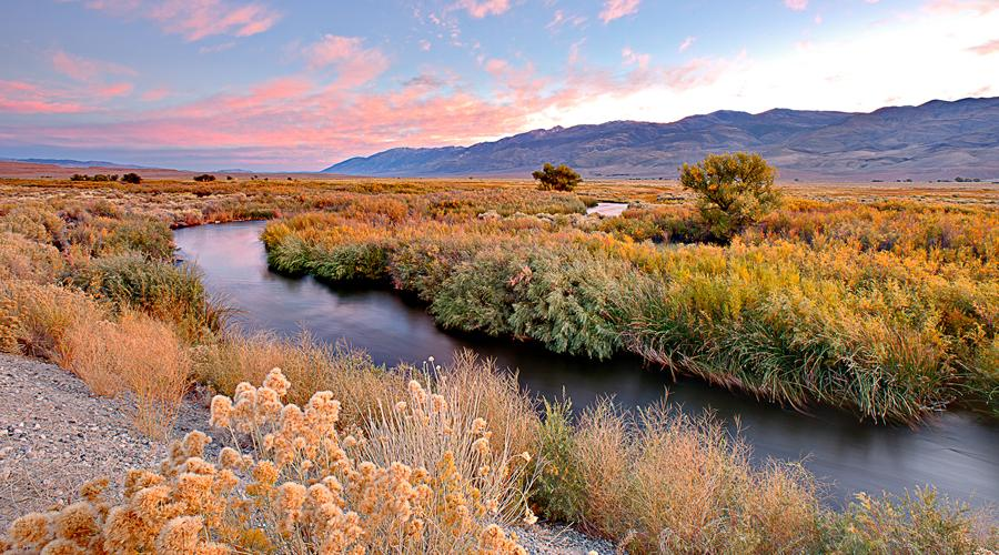 Inyo County Owens River